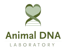 Animal DNA Laboratory