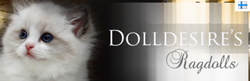 Dolldesires Ragdoll Cattery